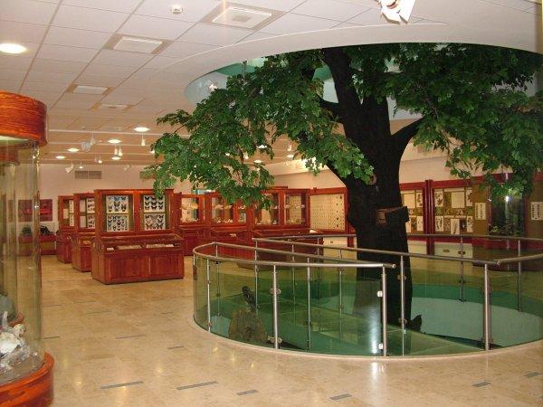 matra-muzeum-gyongyos-14186